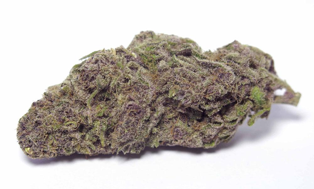 lavender cannabis strain review