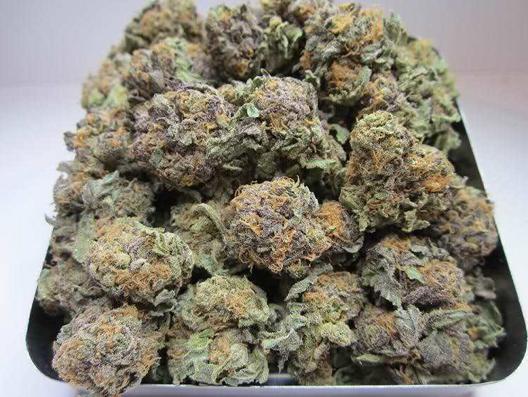 Platinum kush cannabis strain