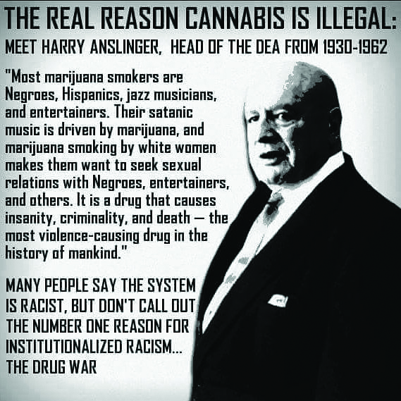 Cannabis Meme Why Weed is Ilegal