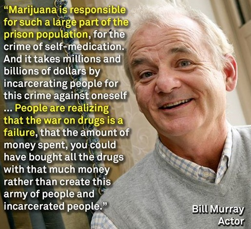 Bill Murray- Marijuana Responsible For Prison Population