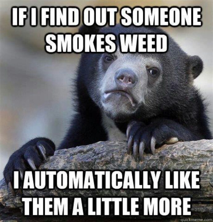 bear like speople who smoke weed