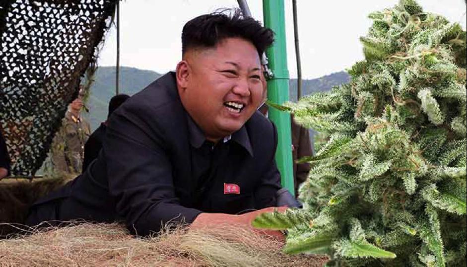 north-korea Kim Jong Un cannabis