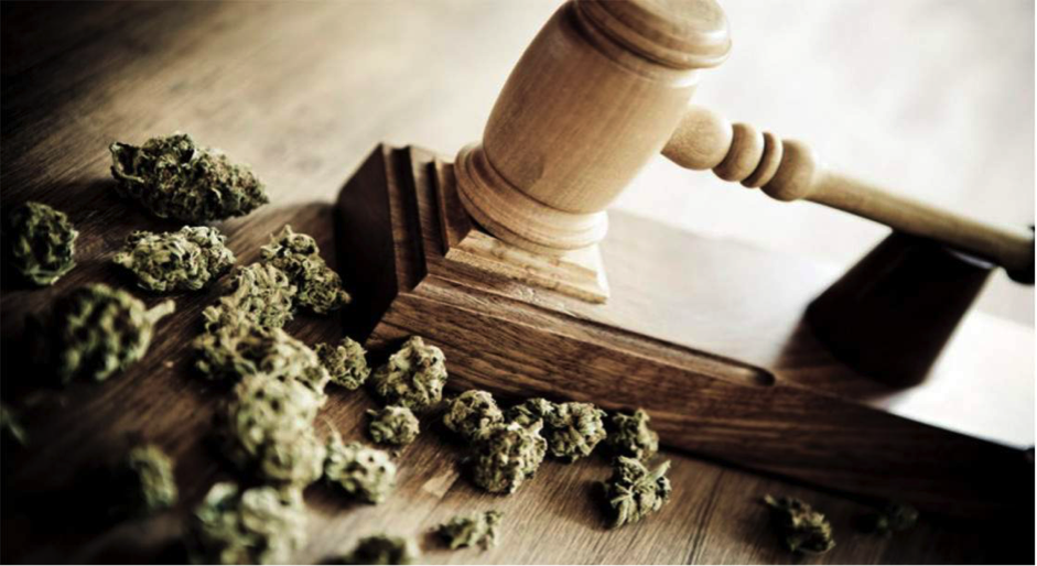 Support for MMJ continues to grow