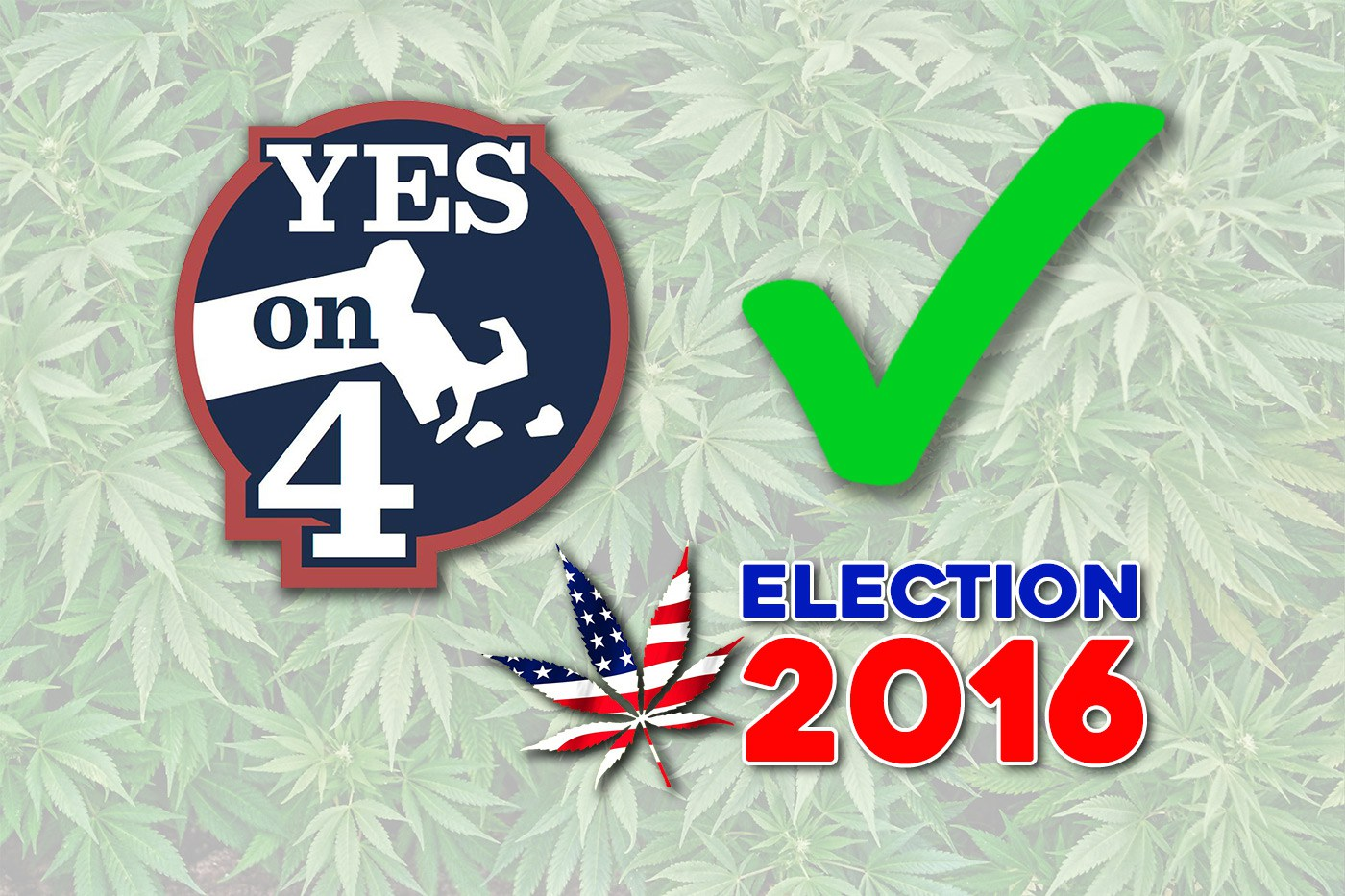 Massachusetts cannabis Yes on 4