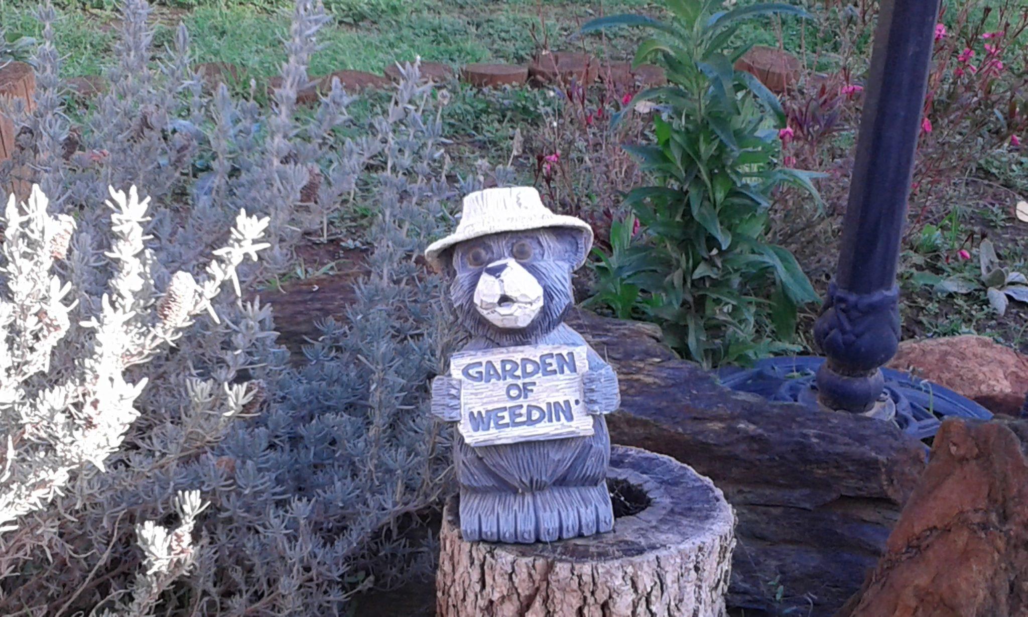 Garden of Weedin High Horns Farm