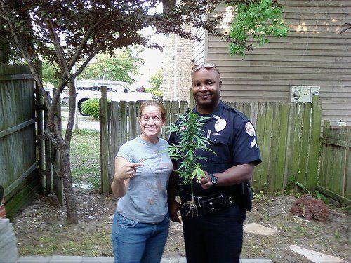 California Cannabis Law Enforcement