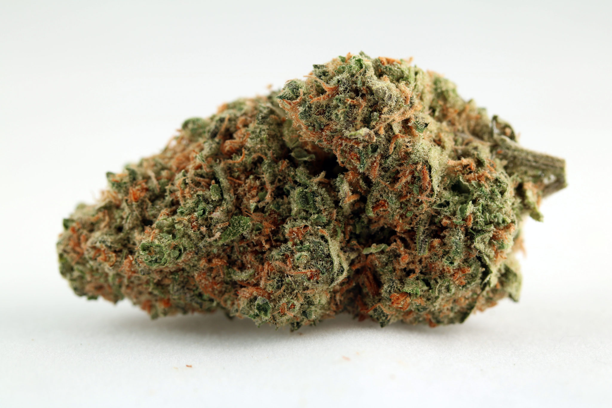 Skunk #1 Strain Review