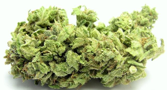 Hindu Kush cannabis strain review