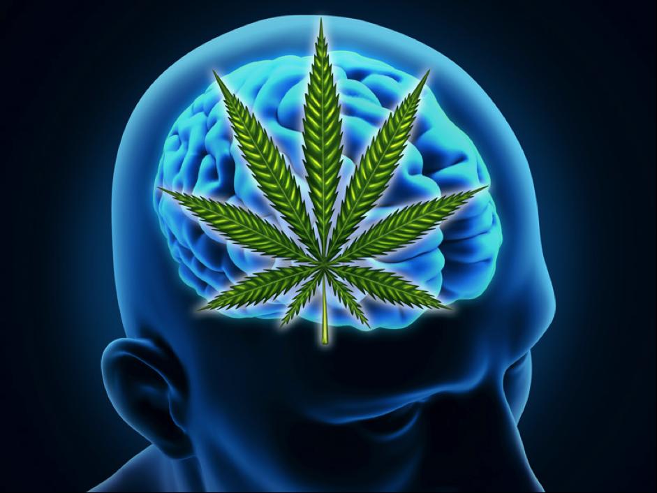Can Cannabis Cure Alzheimer's