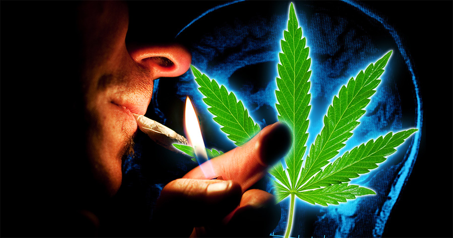 cannabis and schizophrenia does cannabis cause schizophrenia