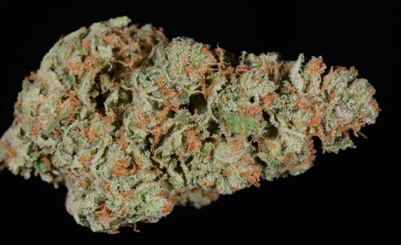 Best Halloween Weed Strains Durban Poison
