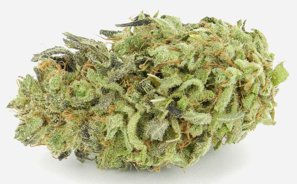 Best Halloween Weed Strains Black Widow Green Poison